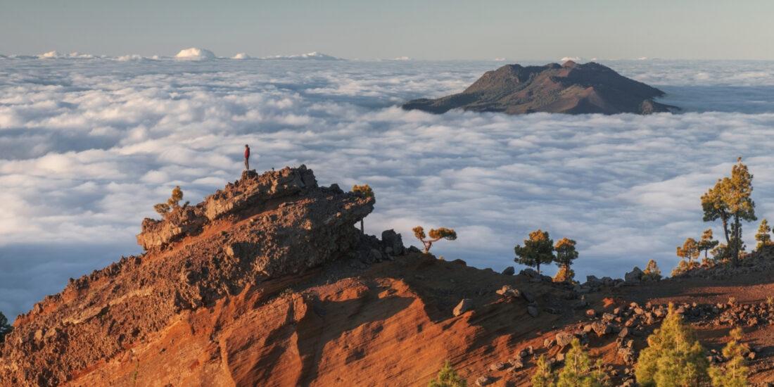La Palma En Plena Calma